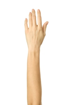 Close up on raised hand voting or reaching isolated