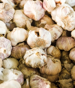 Close-up of raw organic fresh garlic