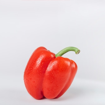 Close-up of red bell pepper on white backdrop