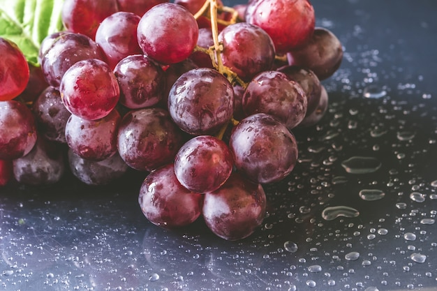Close up of red grapes with water drops on black background