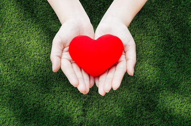 Close up red heart in woman hands