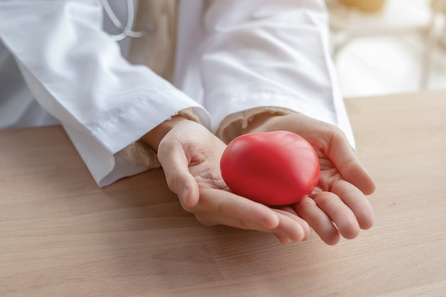 Close-up of red hearts in the hands of women