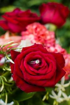 屋外のクローズアップの赤いバラの花びら