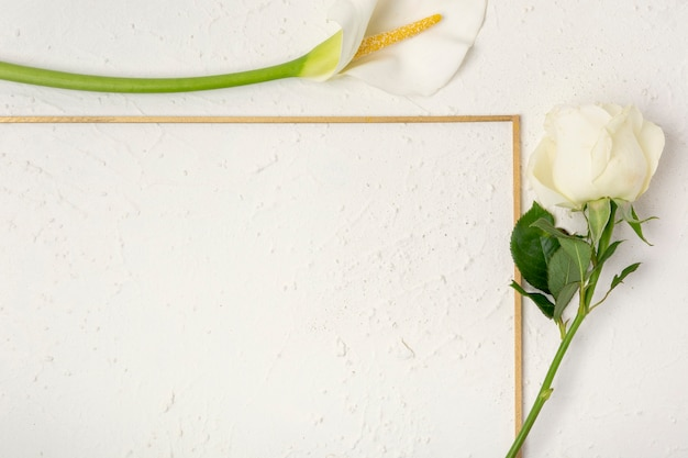 Close-up rose and calla lily frame