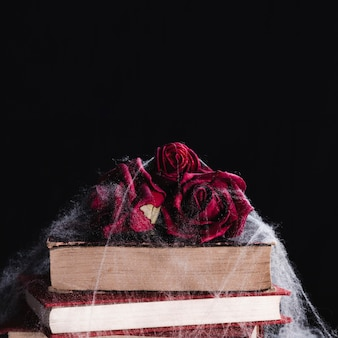 Close-up of roses and books with spider web