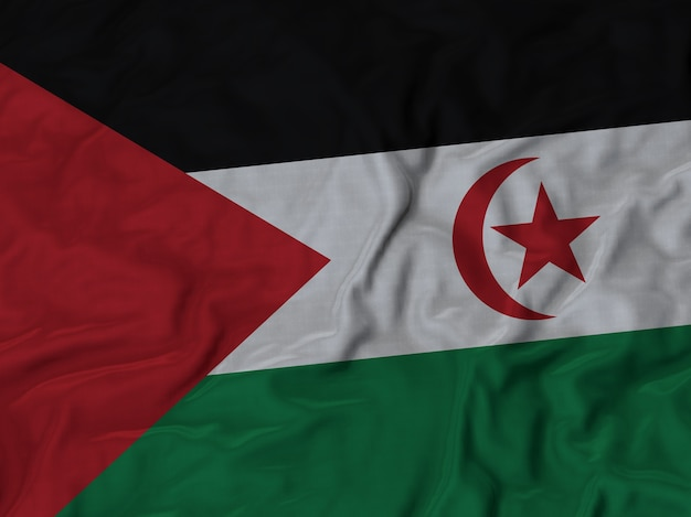 Close up of ruffled sahrawi arab democratic republic flag