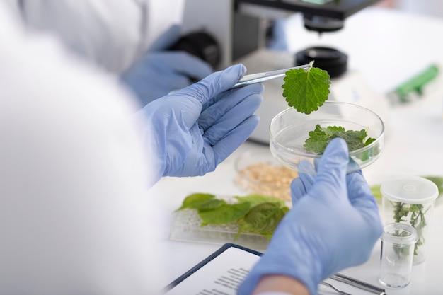 Close up scienziato tenendo la capsula di petri