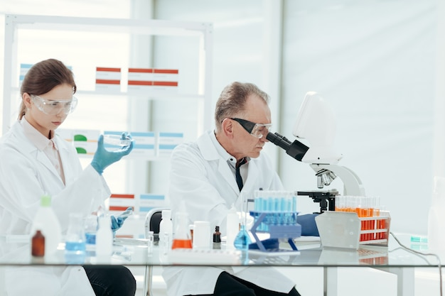확대. 과학자들은 실험실에서 연구를 수행합니다. 과학과 건강.