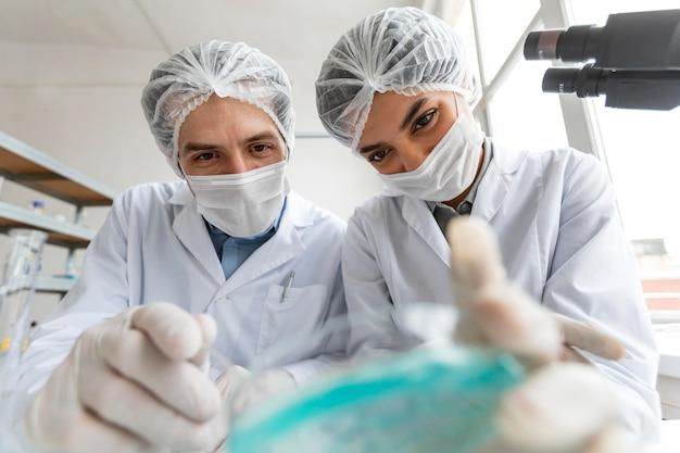 Primo piano scienziati con capsule di petri