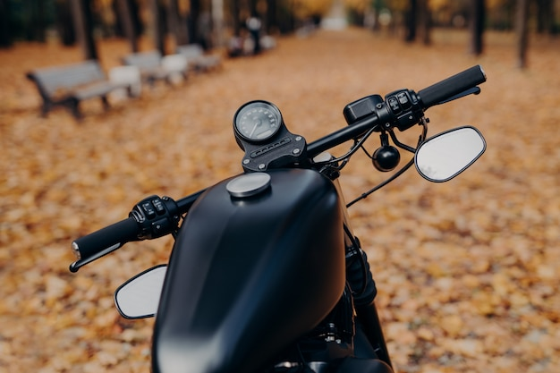 Close up shot of black motorcycle with speedometer, handlebar stands in autumn park against orange fallen leaves