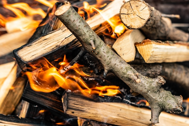 Close up shot of burning firewood