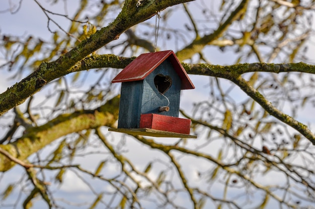Close up shot of a cute bird house in red and blue with a heart hanging from a tree