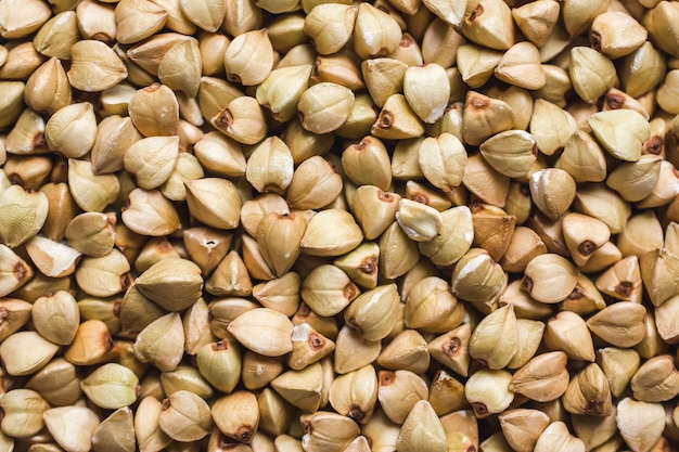 Close up shot of fresh  whole buckwheat