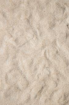 珊瑚砂のクローズアップショット