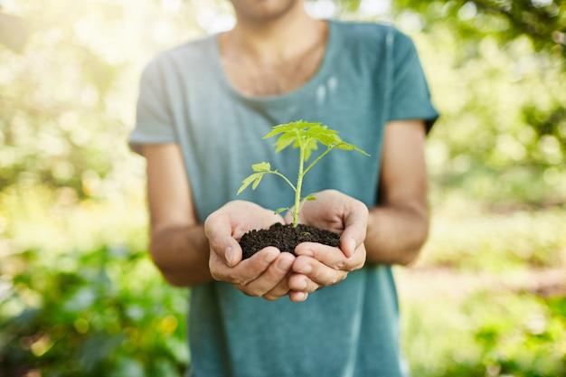 손에 녹색 잎 식물을 들고 파란색 티셔츠에 어두운 피부 남자의 총을 닫습니다. 정원사는 정원에서 자랄 주둥이를 보여줍니다. 선택적 초점