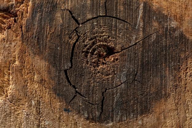 Крупным планом снимок грязной деревянной поверхности