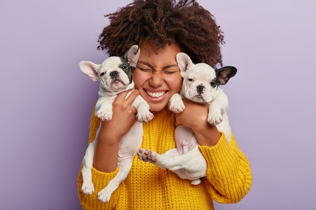 Close up shot of pleased woman with afro hair holds two puppies, spends leisure time with loyal animal friends, happy to have newborn french bulldog dogs