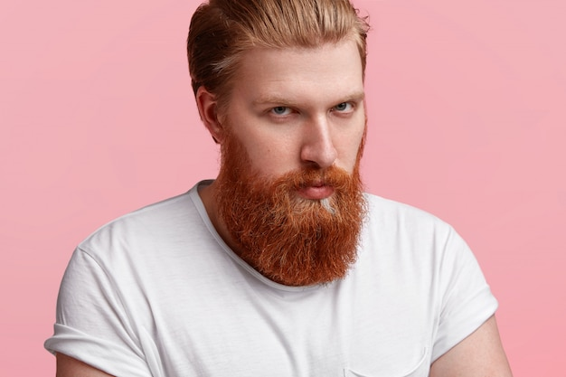 Close up shot of serious caucasian male has stylish haircut and long thick ginger beard, wears casual t shirt, isolated over pink