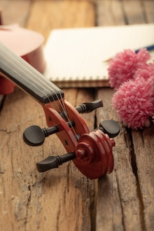Close-up shot violin orchestra instrumental with vintage tone processed