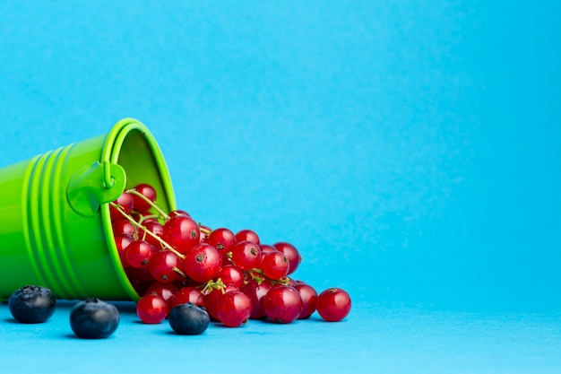 Close-up of small bucket with pouring currants