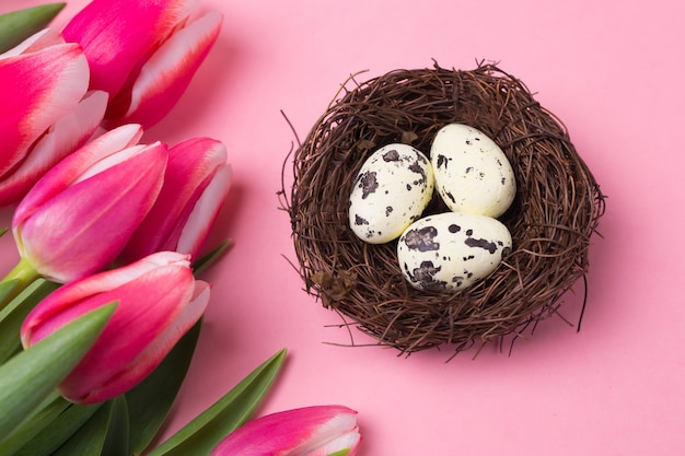 Close-up of small nest with eggs and bright pink flowers tulip. flat lay. easter holiday background.