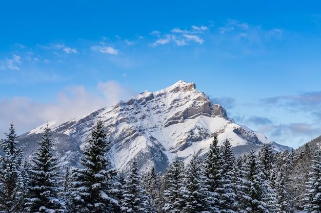 겨울에는 푸른 하늘과 흰 구름 위에 눈 덮인 숲이 있는 눈 덮인 캐스케이드 산을 닫습니다