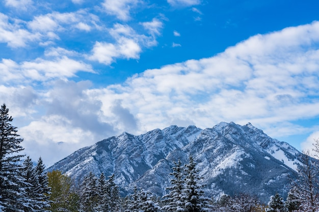 Close up snowcovered mount norquay with snowy forest over blue sky and white clouds in winter