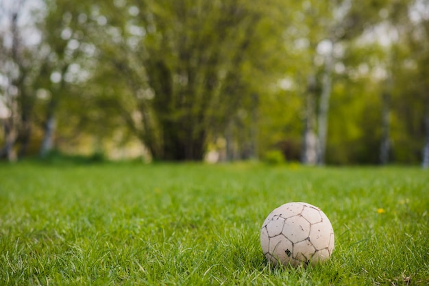 Close-up of soccer ball on the grass