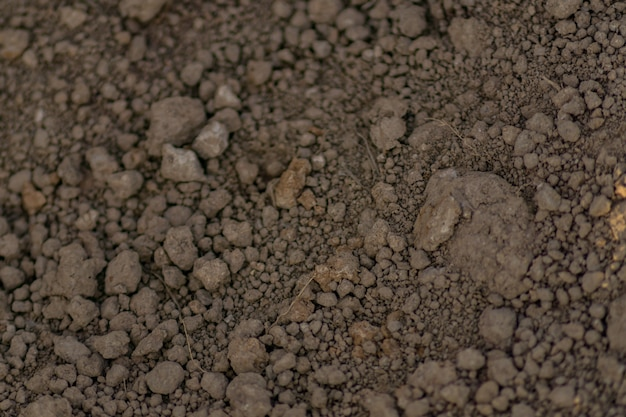 Close up of soil background.