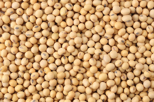 Close up soybeans top view