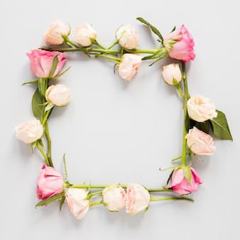 Close-up spring floral square frame