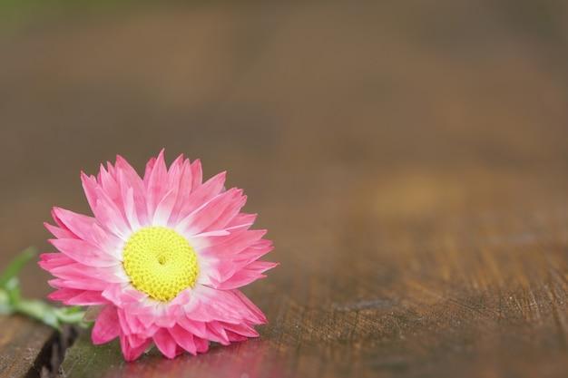 Крупным планом соломенный цветок на деревянных досках