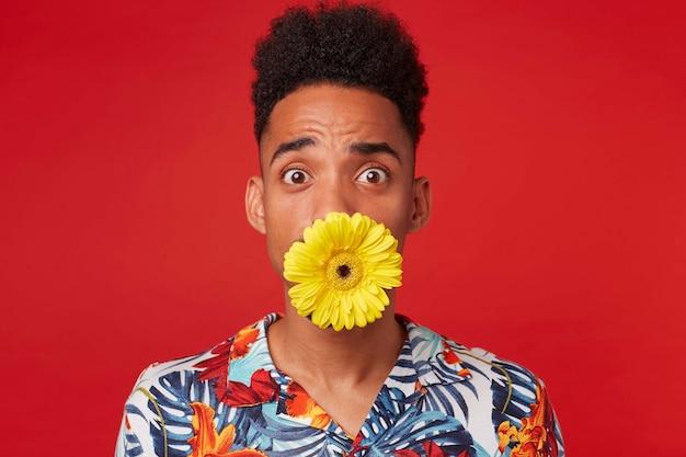 Primo piano di giovane ragazzo dalla pelle scura sorpreso, indossa in camicia hawaiana, guarda la telecamera con espressione sorpresa, tenendo un fiore in bocca, si erge su sfondo rosso.