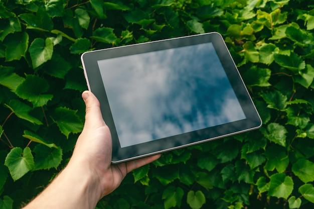 男の手にクローズアップタブレット。緑を背景に。