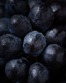 Close-up on tasty blueberry, natural fresh