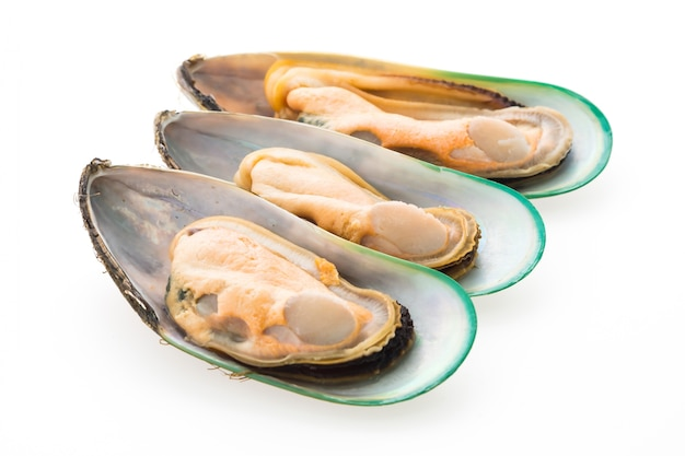 Close-up of tasty mussels