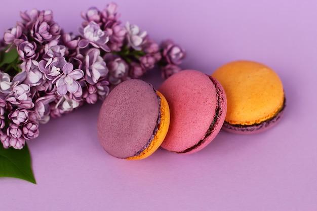 Закройте три французских красочных торта macarons и сиреневые цветы на фиолетовом фоне
