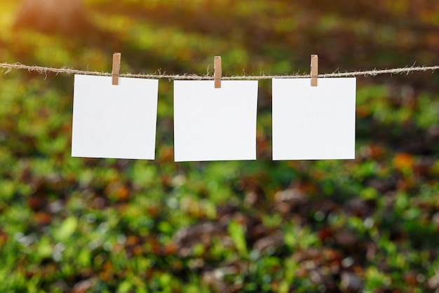 Close up of three white note papers hung by wooden clothes pegs