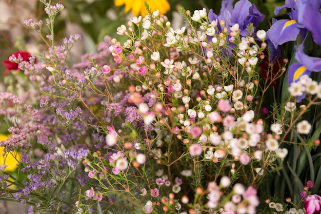 Close-up of tiny spring flower bouquet