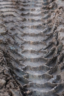 Close-up tire tracks truck on a dirt road in daylight.