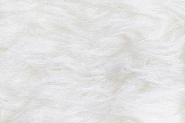 Close up top view of white clean fur texture background surface
