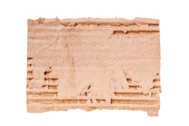 Close-up of torn cardboard on white background
