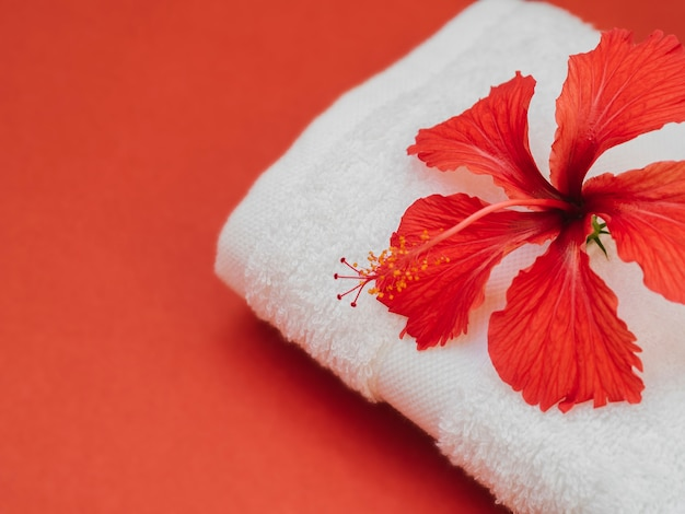 Close up towel with flower on top