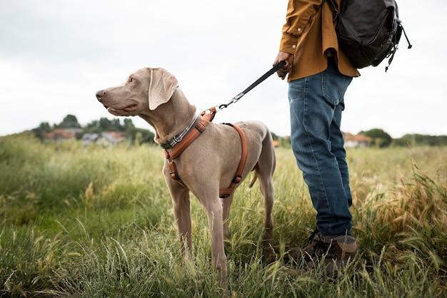 Close up traveler walking with dog