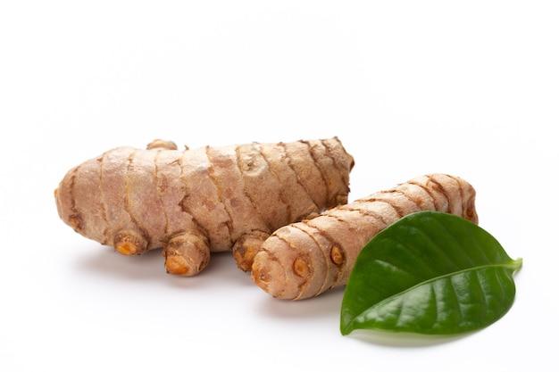 ウコン、curcuma longa linn、白で分離された根茎をクローズアップ