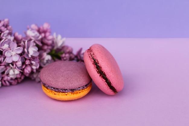 Закройте вверх по две французские красочные торты macarons и сиреневые цветы на фиолетовом фоне.