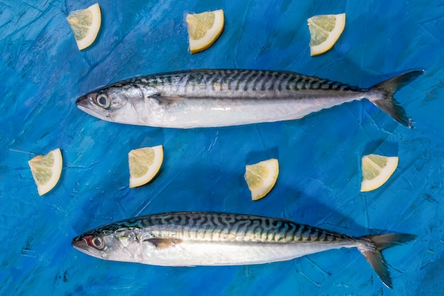 Close-up of two raw fresh healthy mackerel fish, top view