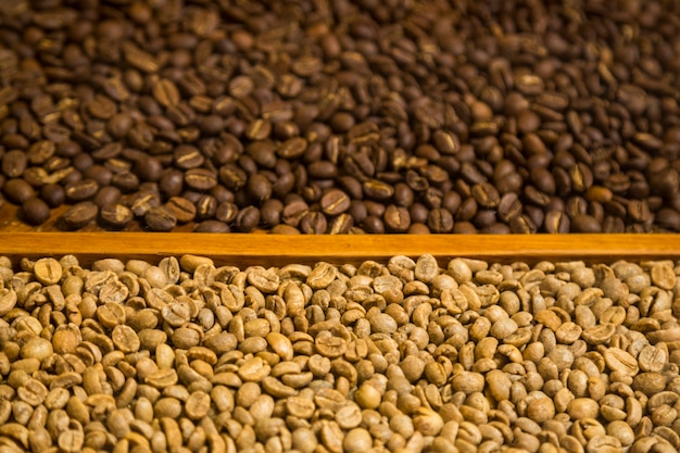 Close-up two types of coffee beans background