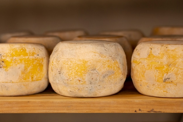 Close-up variety of mature cheese