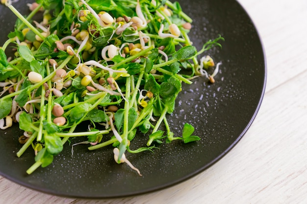 Close up of vegan healthy salad made of peas microgreen sprouts and sprouted beans on wooden wall